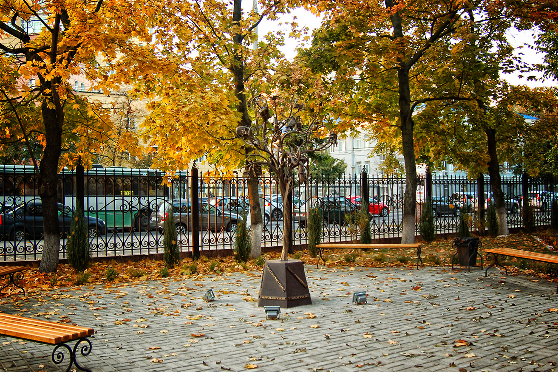 Воронежское чудо-дерево